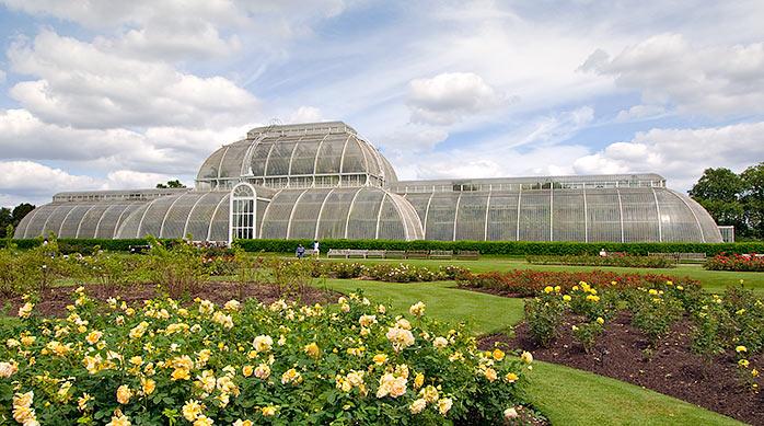 Kew Gardens - things to do in London