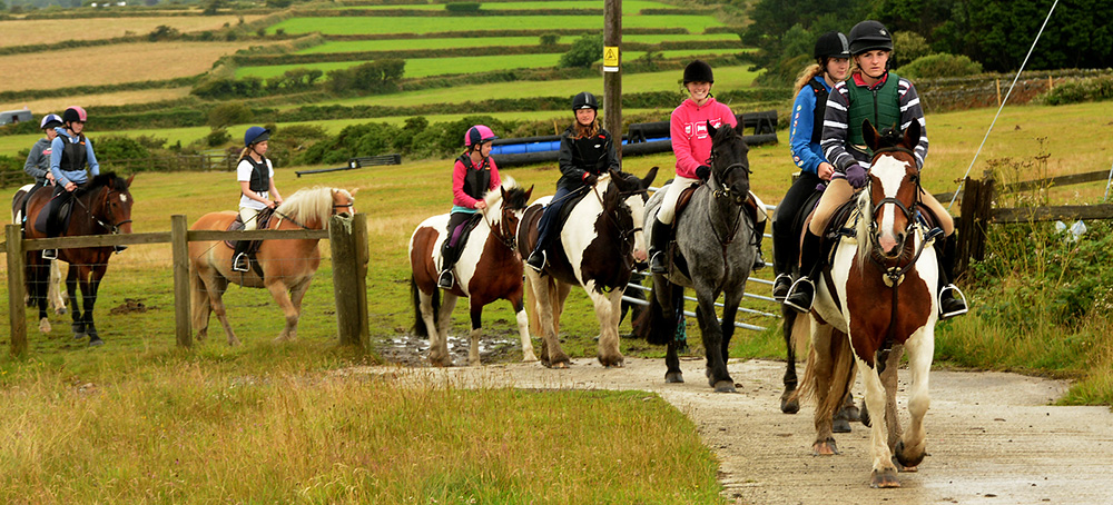 horse riding, Things to do during the day