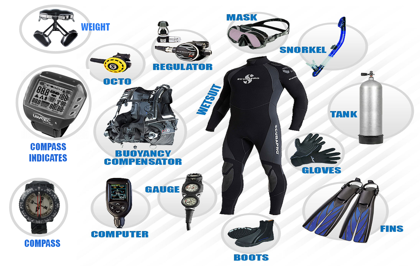 suba diving gear