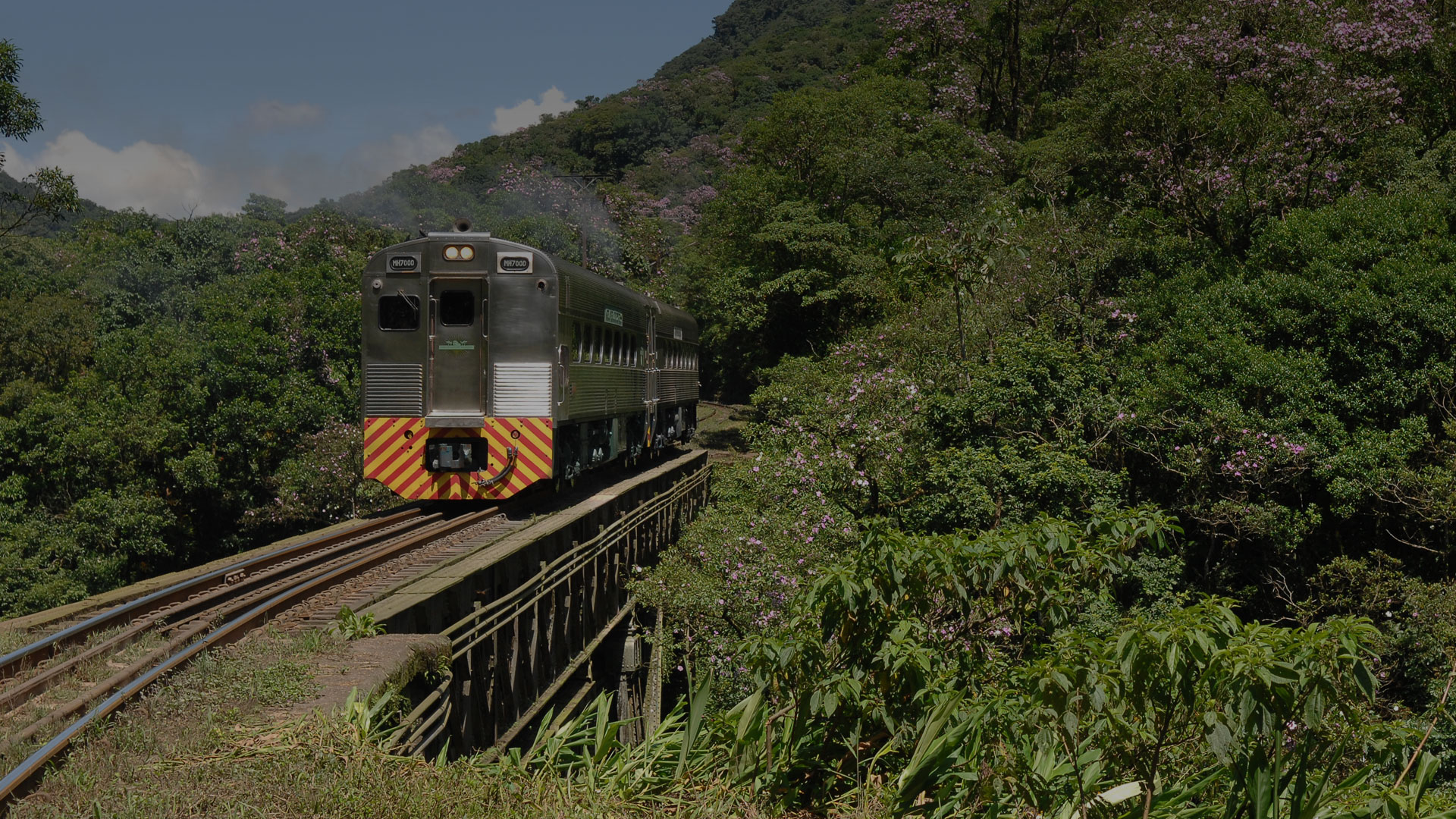 train  - things to do in Brazil