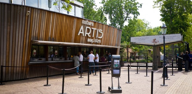 #12 of 15 Places to See in Amsterdam - Artis Zoo - Places to See in Amsterdam