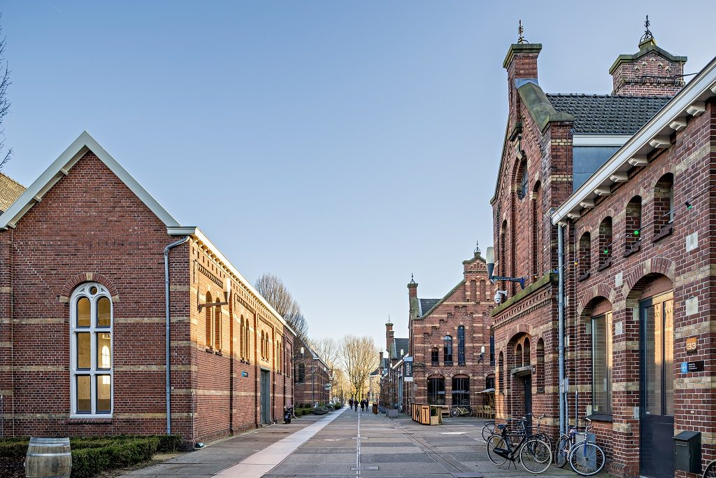 #14 of 15 Places to See in Amsterdam - Westergasfabriek - Places to See in Amsterdam