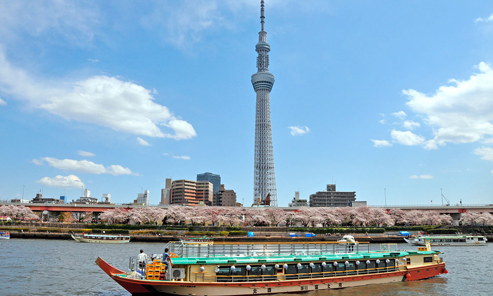 boat ride, Things to do in Tokyo