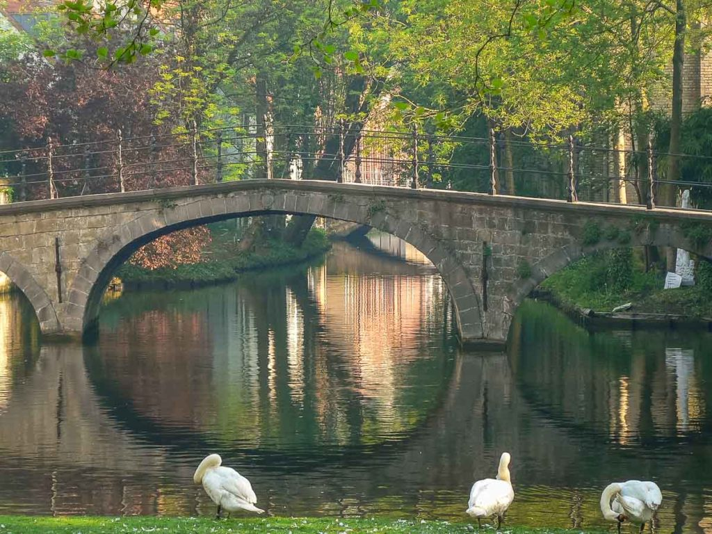 #15 of 15 Things to do in Bruges, Belgium – Visit the Minnewater Lake, Lake of Love - Things to do in Bruges