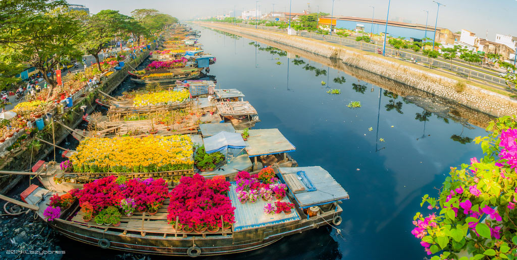 floating flower market, Things to do in Amsterdam