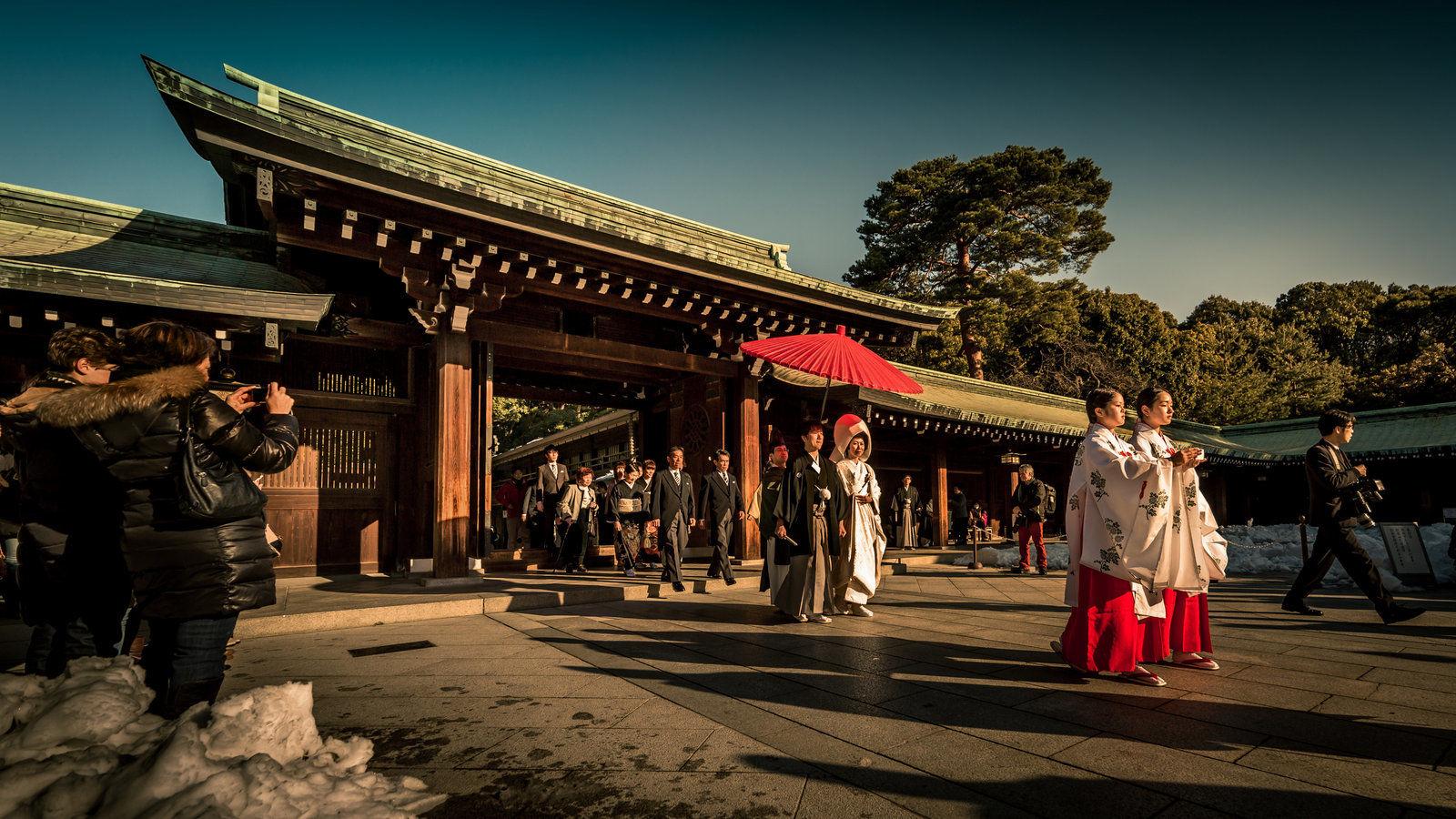 Meiji Shrine , Things to do in Tokyo