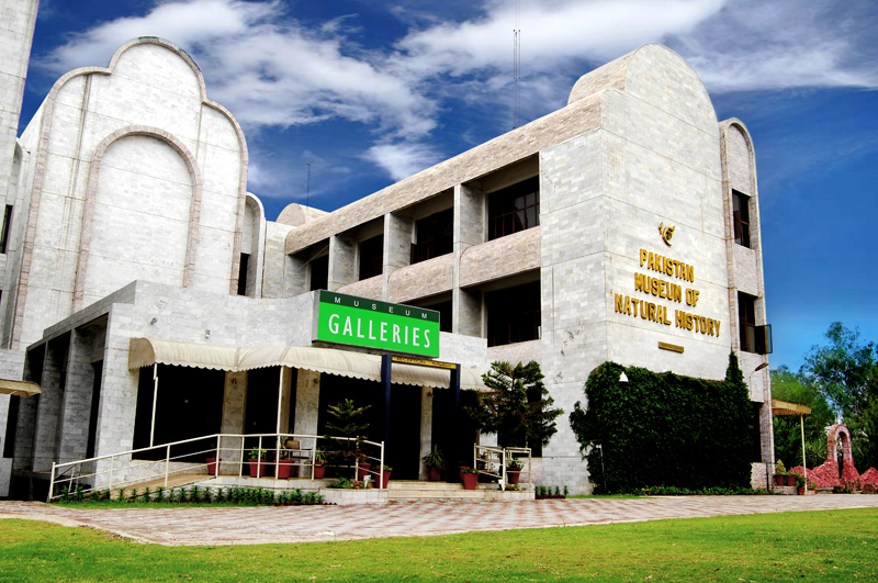 pmnh, Top Places to Visit in Islamabad