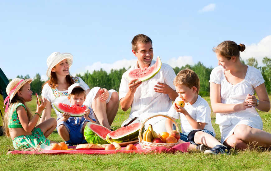 Plan a Picnic with your family #8 of 20 Things to Do in Summer - Things to Do in Summer