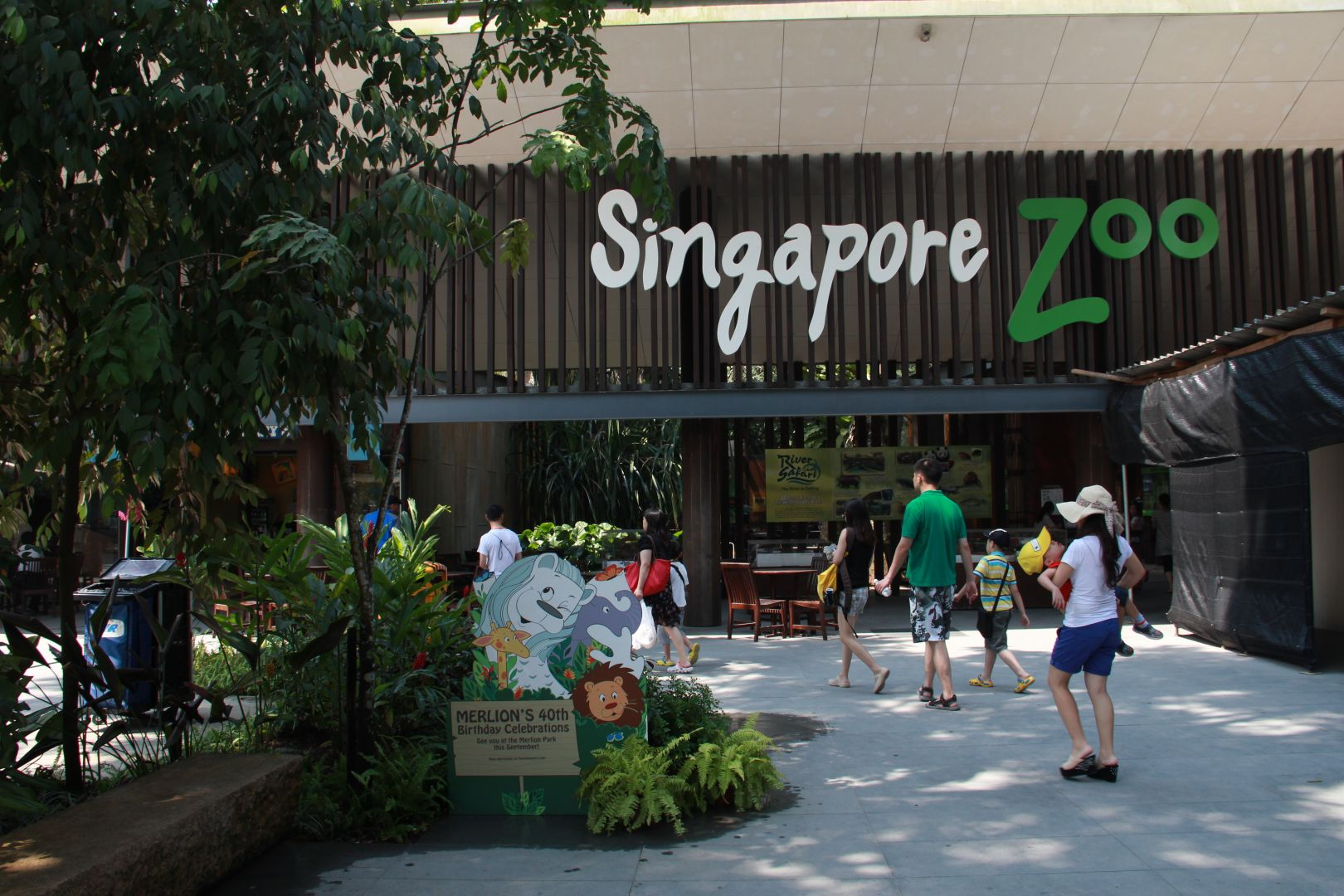 singapore zoo - things to do in Singapore