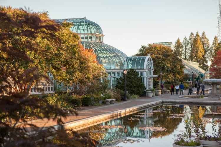 Brooklyn Botanic Garden, Unique things to do in New York