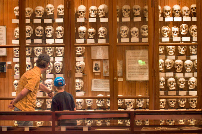 mutter museum, Unique things to do in Philadelphia