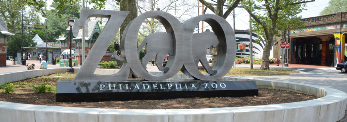 philly zoo, Unique things to do in Philadelphia