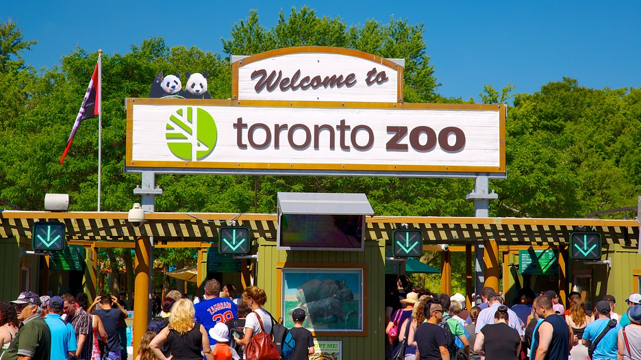 Toronto Zoo, Unique things to do in Toronto