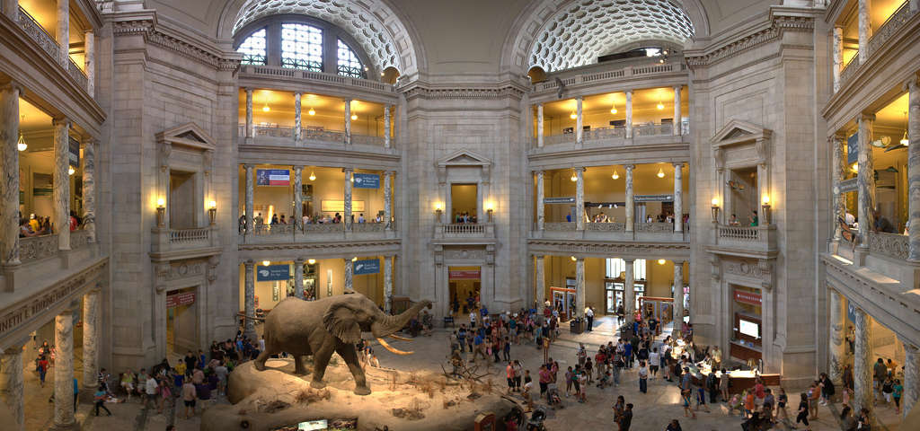 Smithsonian National Museum of Natural History, Unique things to do in Washington, D.C.