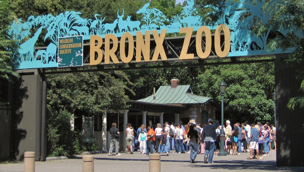 bronx zoo, Unique things to do in New York