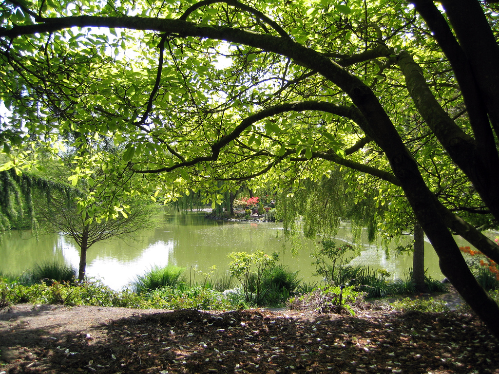 Minoru Park, Things to do in Richmond, Canada