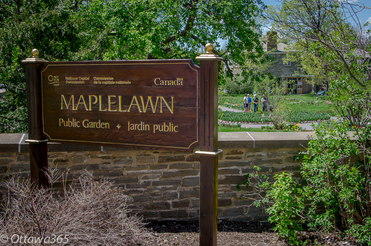 maplelawn garden, Things to do in Ottawa