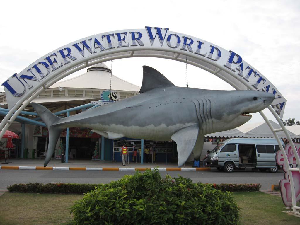 Underwater world Pattaya - things to do in Pattaya
