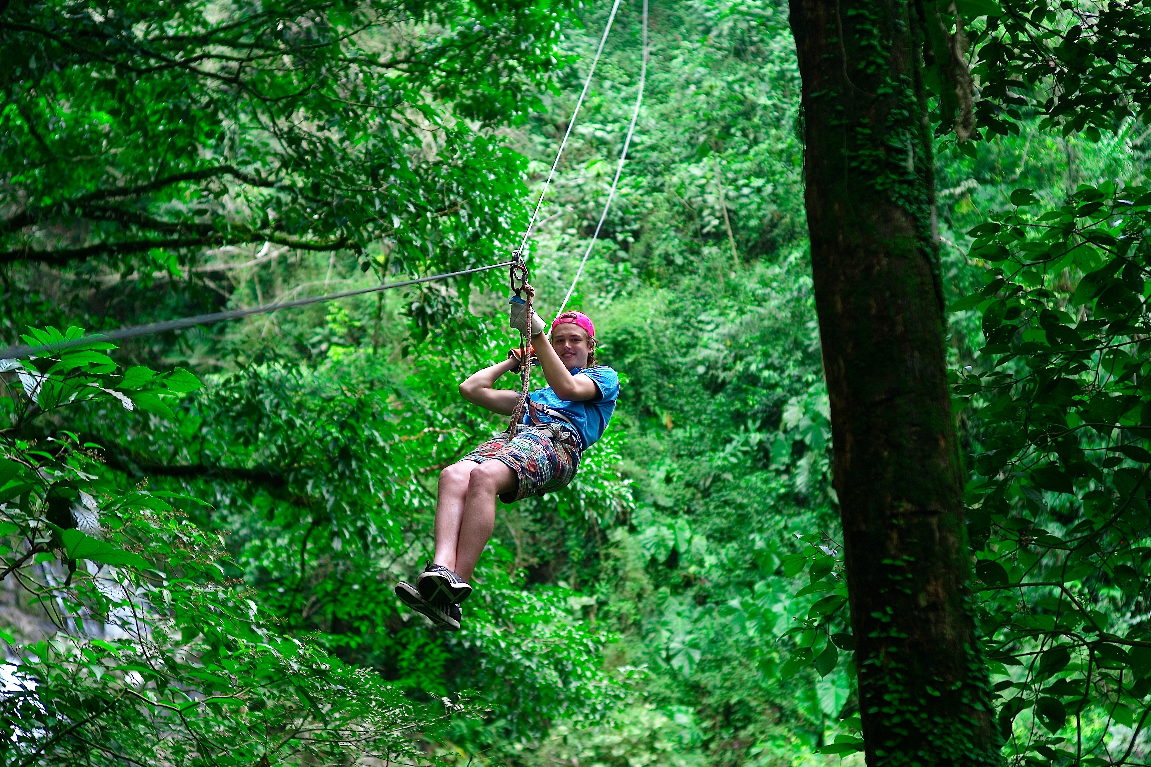 Zip line through the jungle - Things to do in Chiang Mai