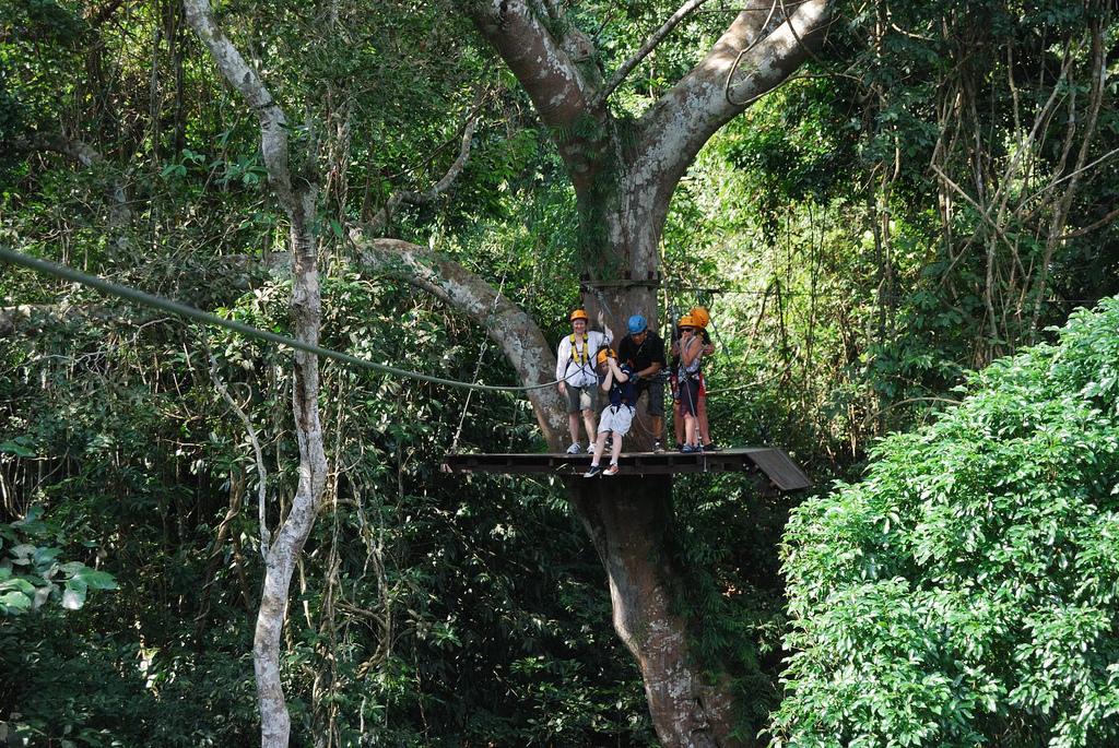 swing like a monkey at Gibbon Chonburi - things to do in Pattaya